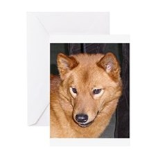 finnish spitz Greeting Cards