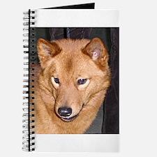 finnish spitz Journal