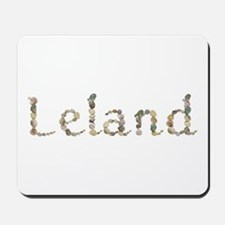 Leland Seashells Mousepad
