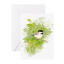 Cute Chickadee Bird in Poplar Tree Greeting Cards