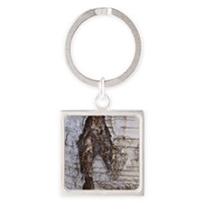 Birch Square Keychain