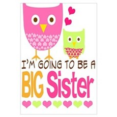 Big Sister Baby Owls I'm Going to be a Big Sister Canvas Art