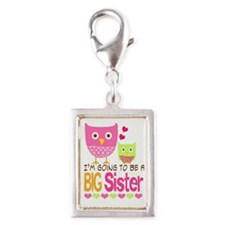 Big Sister Baby Owls I'm Goi Silver Portrait Charm