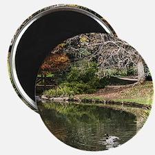 Duck Pond Scene Magnet