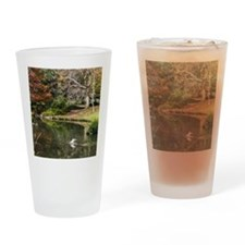 Duck Pond Scene Drinking Glass