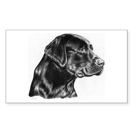 Black Lab drawing Sticker (Rectangle)