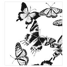 Black n White Butterflies 1 Poster