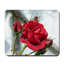 English Rose Mousepad