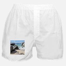 The Baths Boxer Shorts