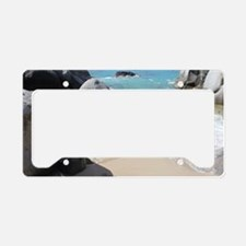 Caribbean Licence Plate Frames Caribbean License Plate