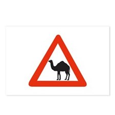 Danger Camels - UAE Postcards (Package of 8)