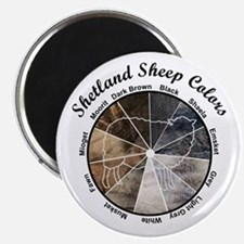 Shetland Sheep Colors Magnets