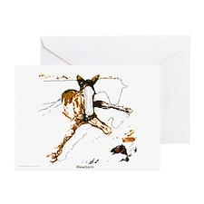 Newborn foal cards 10p/blank/boxed