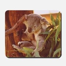 Koala Bear Love Mousepad