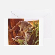 Koala Bear Love Greeting Cards