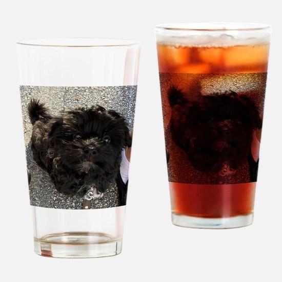 Cute Havanese Drinking Glass