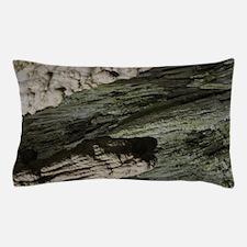 Carlsbad  Pillow Case
