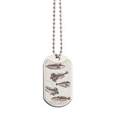 From an Antique Fish Print Dog Tags