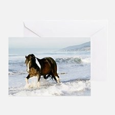 Horse in Surf 5x7 individual card with envelope