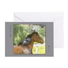 Bay Horse THANK YOU card blank,single,