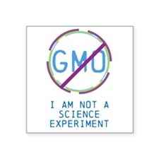 Not An Experiment Sticker