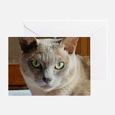Lilac Burmese Cat Greeting Card