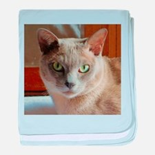 Lilac Burmese Cat baby blanket