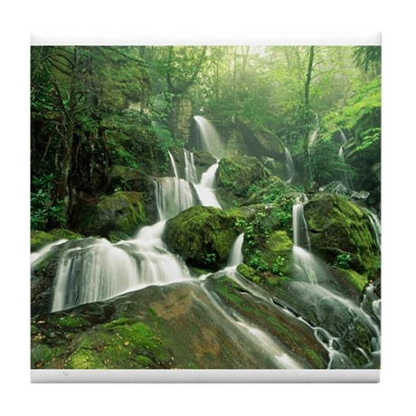 Laurel Falls, Tennessee Tile Coaster