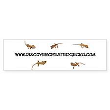 Discover Crested Gecko Bumper Bumper Sticker