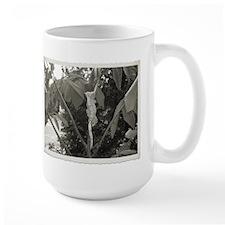 Discover Crested Gecko Mug