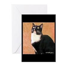 Curious Cat Greeting Cards (Pk of 20)
