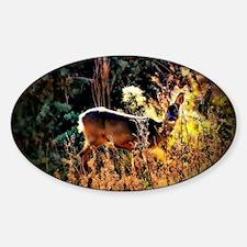 Roe Deer. Decal