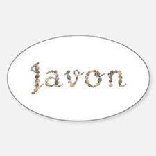 Javon Seashells Oval Decal