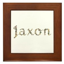 Jaxon Seashells Framed Tile