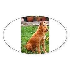 irish terrier sitting Decal