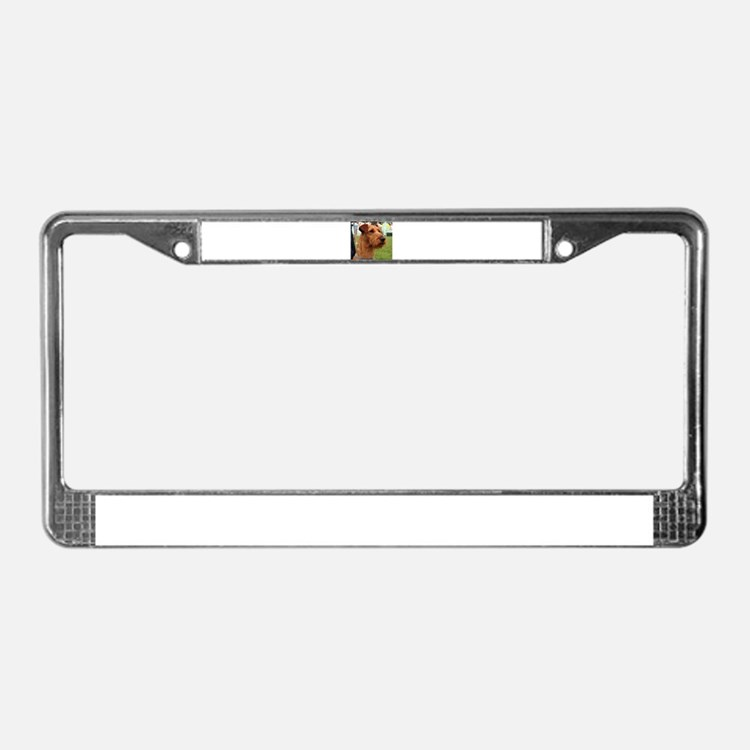 2 irish terrier License Plate Frame