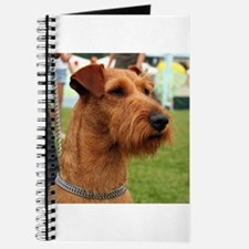 2 irish terrier Journal