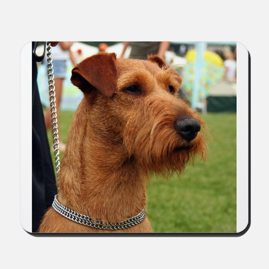 2 irish terrier Mousepad