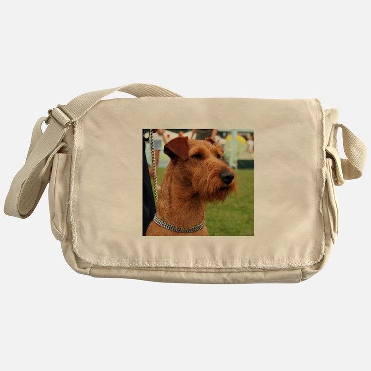 2 irish terrier Messenger Bag