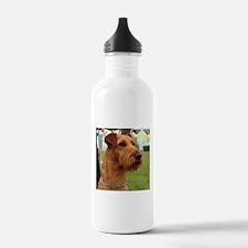 2 irish terrier Water Bottle