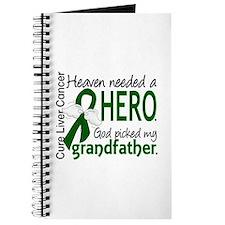 Liver Cancer HeavenNeededHero1 Journal