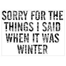 Sorry For The Things I Said When It Was Winter Poster