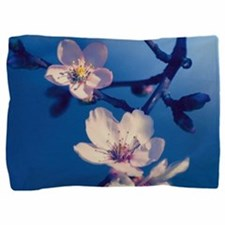 Pink Fruit Blossoms on Blue Pillow Sham