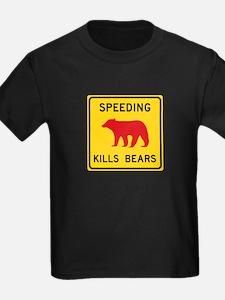 Speeding Kills Bear, California T