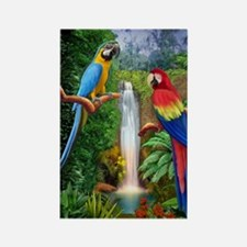 MaCaw Tropical Parrots Rectangle Magnet