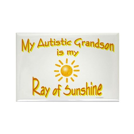 Ray Of Sunshine (Grandson) Rectangle Magnet (10 pa
