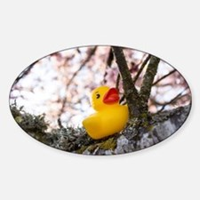 Ducky Branch Decal
