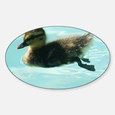 Duckling Decal