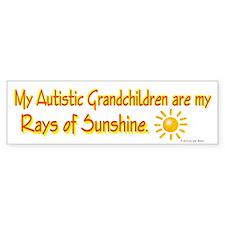 Rays Of Sunshine (Grandchildren) Bumper Car Sticker