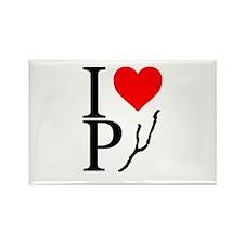 PYNYUSA Logo Magnets